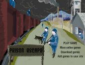 Prison Escape - Jocuri Aventura